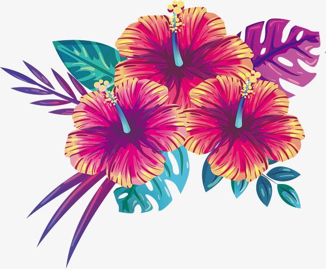Blooming Summer Flowers Vector Png Beautiful Flowers Summer