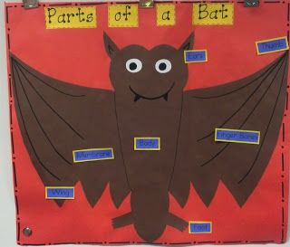parts of a bat~labeling diagram oct~school first grade, 1st Parts of a Rabbit Diagram