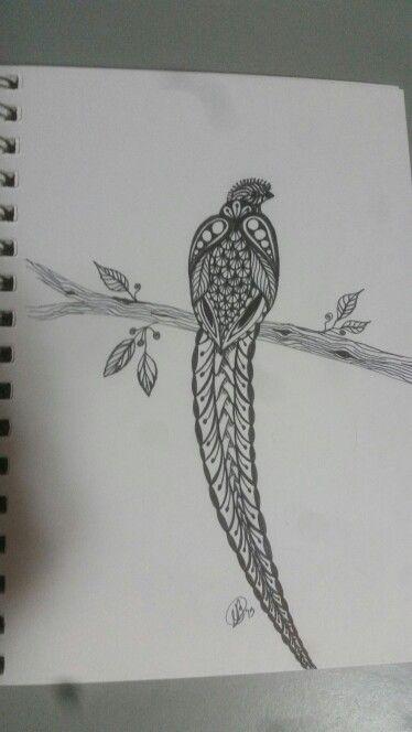Green Long Tail