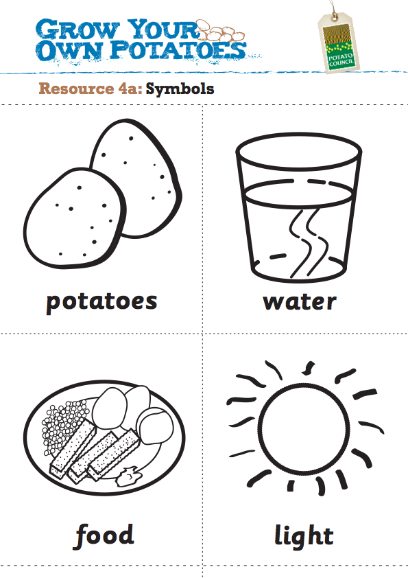 Grow your own potatoes learning worksheets – Plant Needs Worksheet