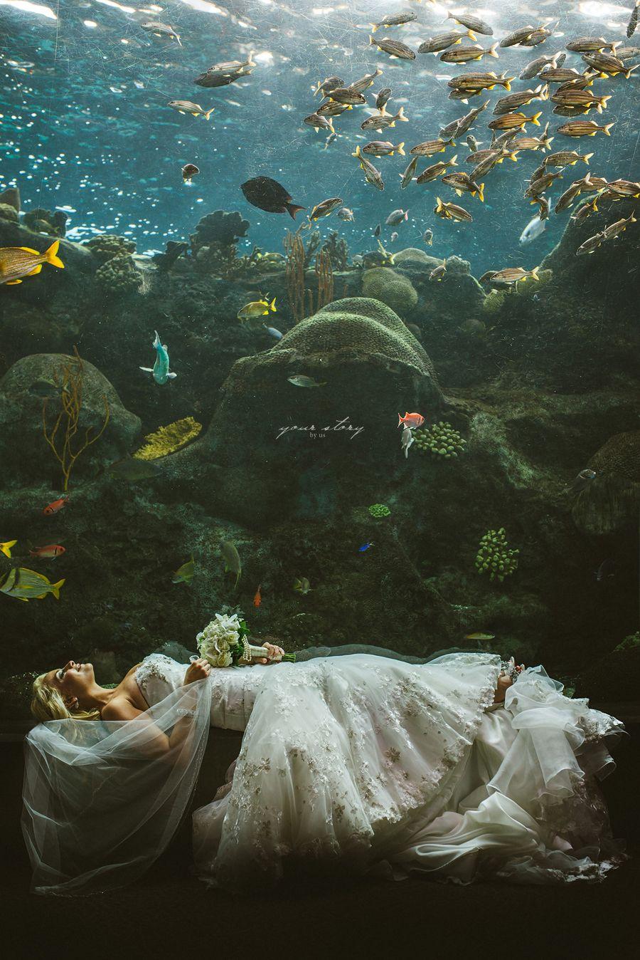 Tampa Florida Aquarium Wedding