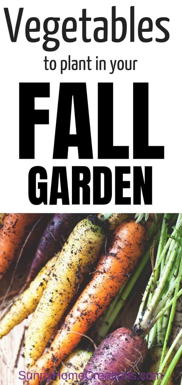 Best Vegetables for Your Fall Garden