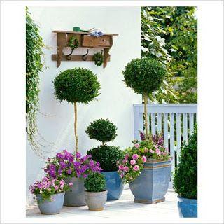 Azul vital decoraci n de jardines peque os lugares y for Arreglos para jardines pequenos