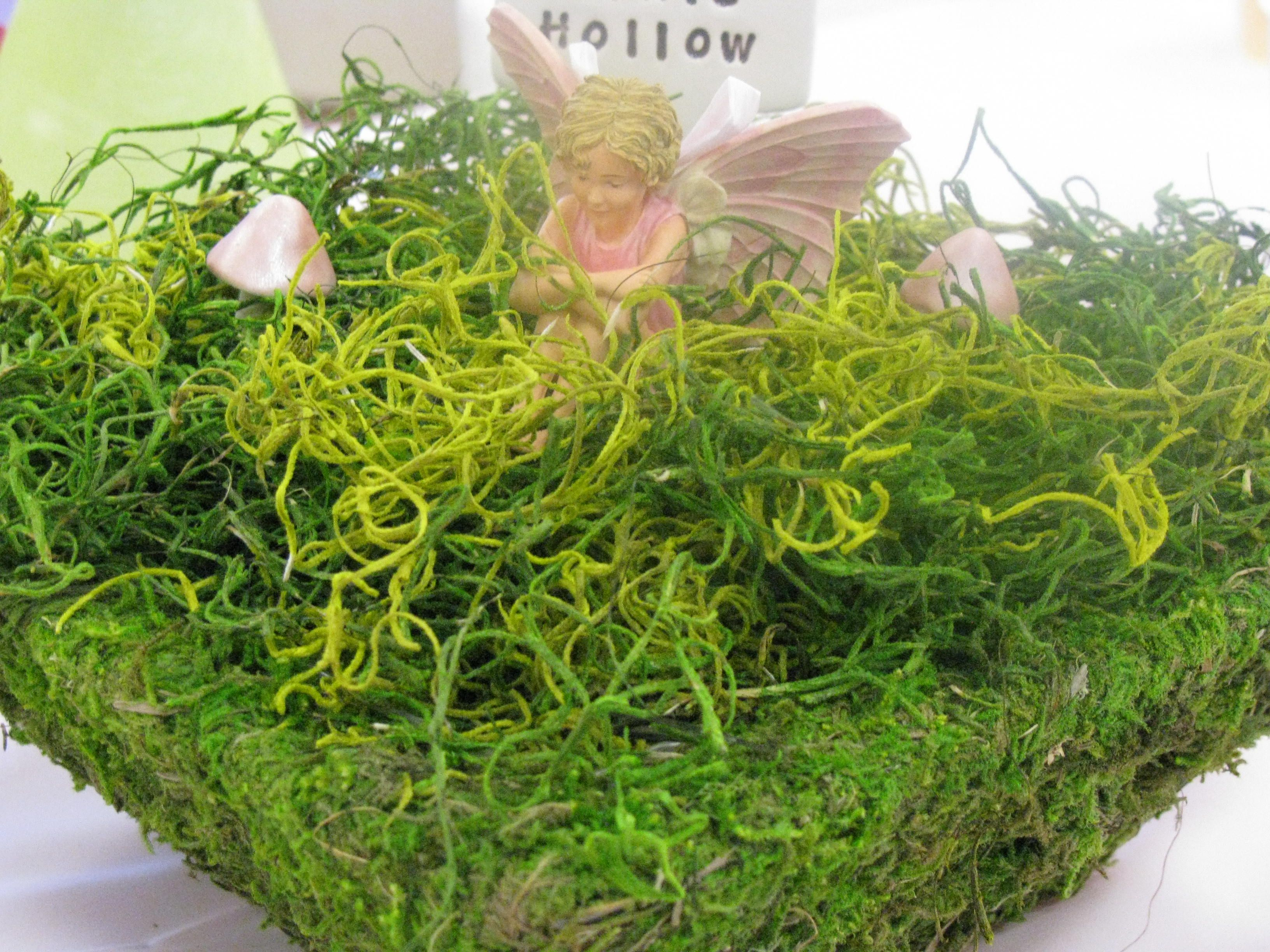 fairy garden centerpiece by jack and kate