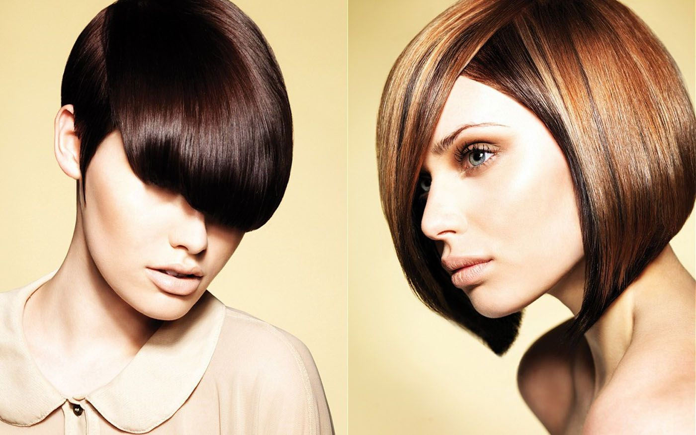 Hair coloring hair color ideas brown hair color as trends in