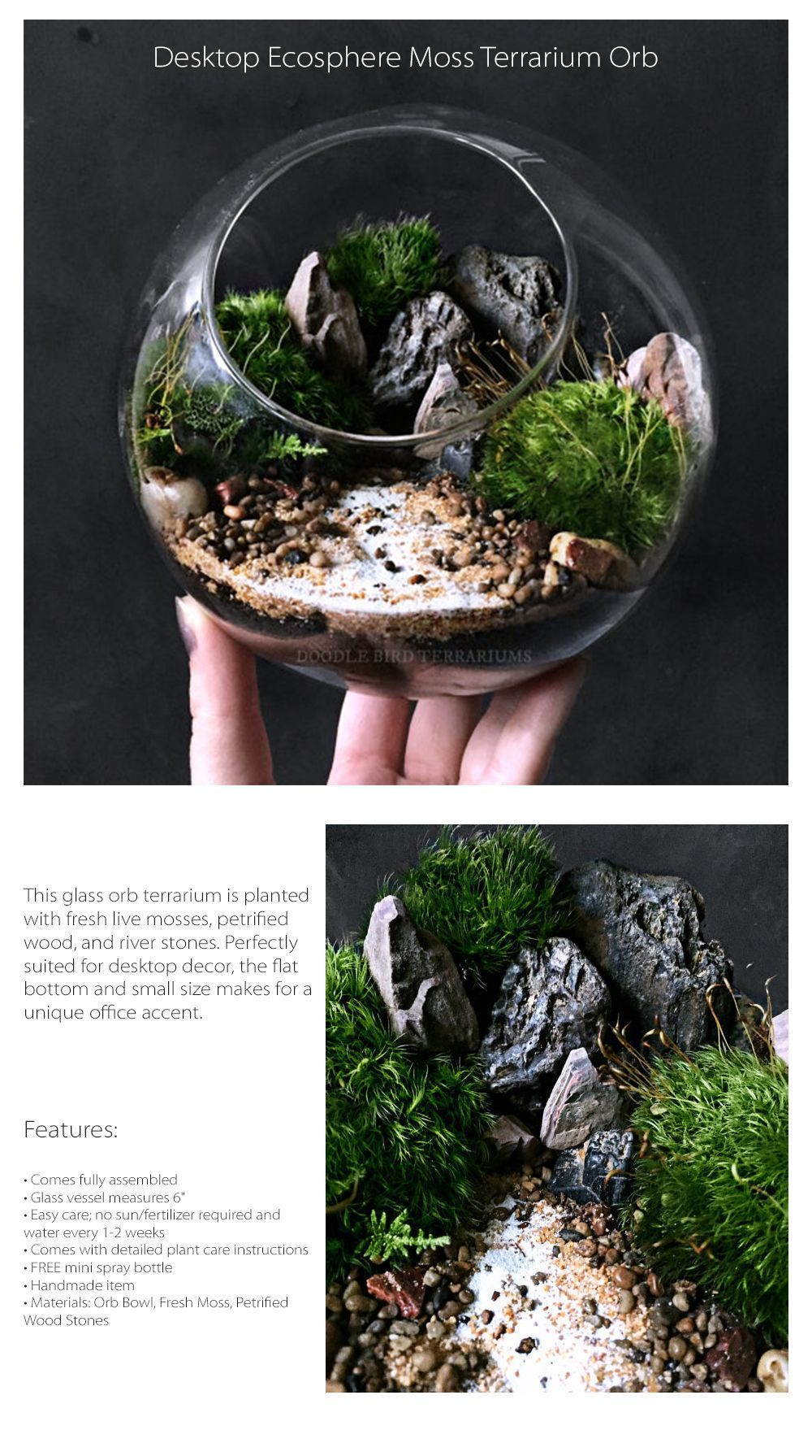 Desktop Ecosphere Moss Terrarium Orb Miniature Landscape Garden