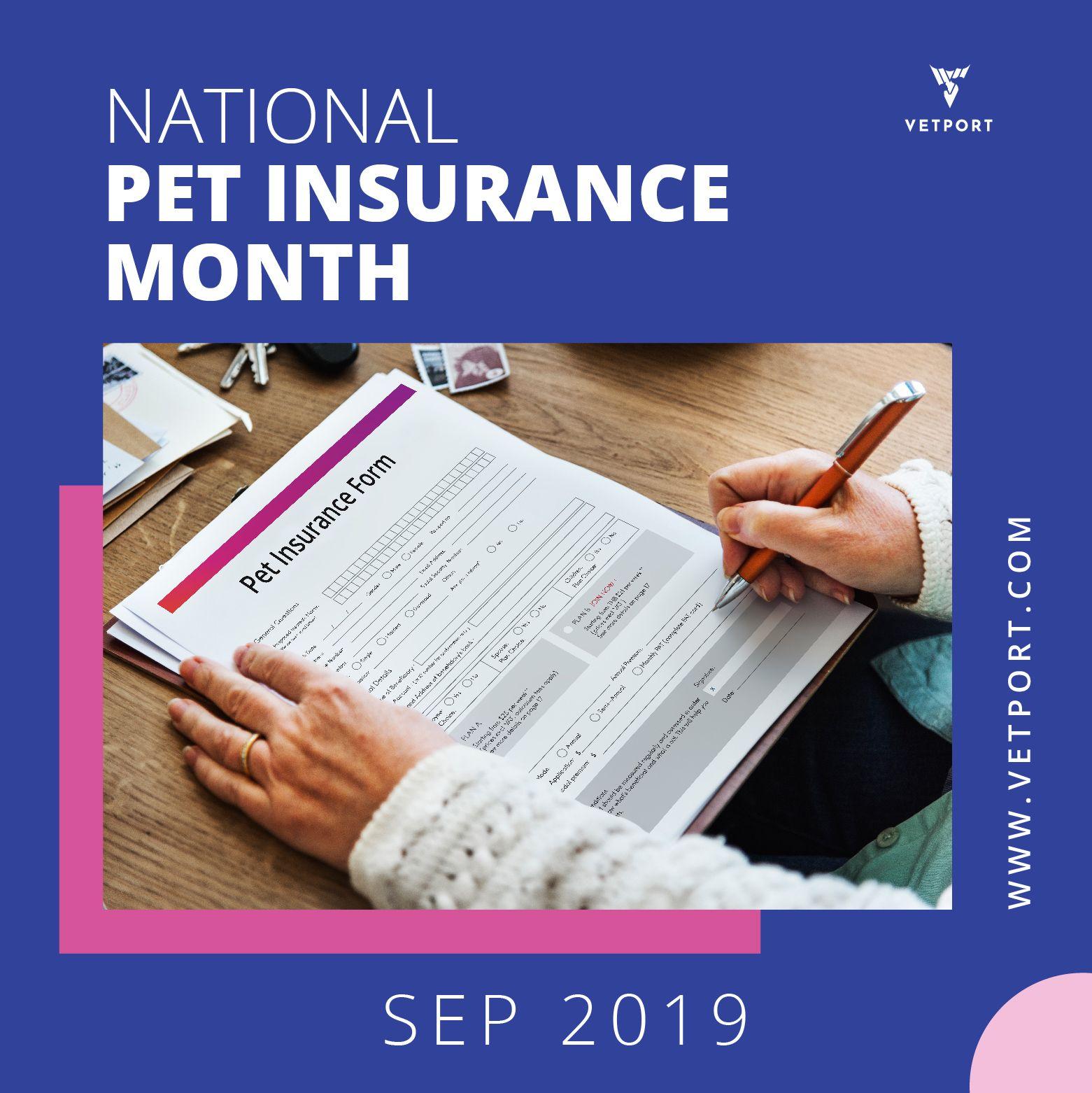 National Pet Insurance Month Pet insurance, Friday