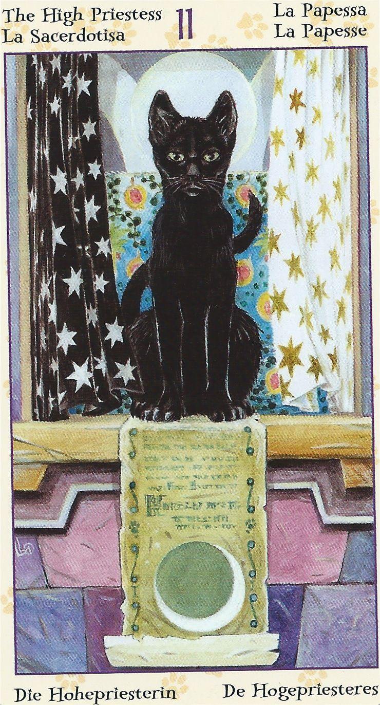 Pin Von Auf Tarot Cards Tarot Karten Kunst Tarot Katzen Kunst