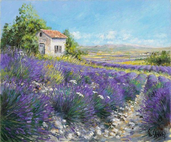 Daniel sannier peintre picard peinture lavande et paysages - Peinture couleur lavande ...