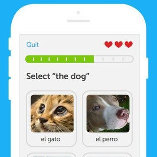 Duolingo (Free, iOS, Android, and Windows Phone) is a visual, interactive way to learn the basics of a new language.