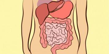 La localización de tu dolor de barriga indica por qué lo padeces...