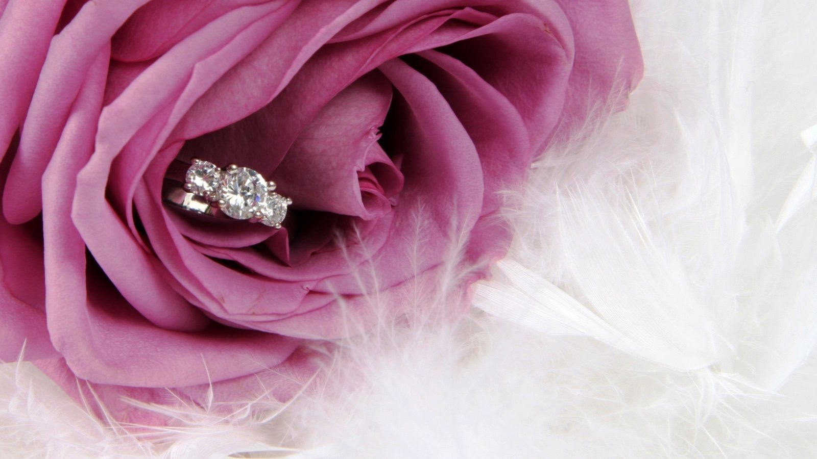 engagement wallpapers backgrounds | Engagement Wallpapers ...
