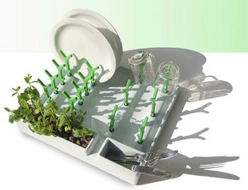 24+ Dish rack that grows plants ideas in 2021