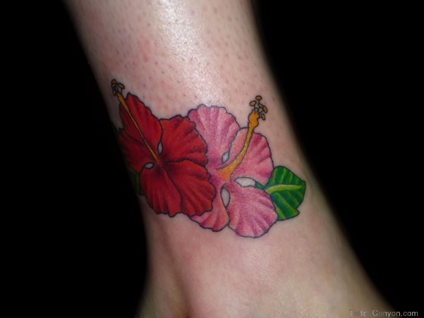 Hibiscus tattoo picture on ankle body art pinterest hibiscus hibiscus tattoo picture on ankle izmirmasajfo