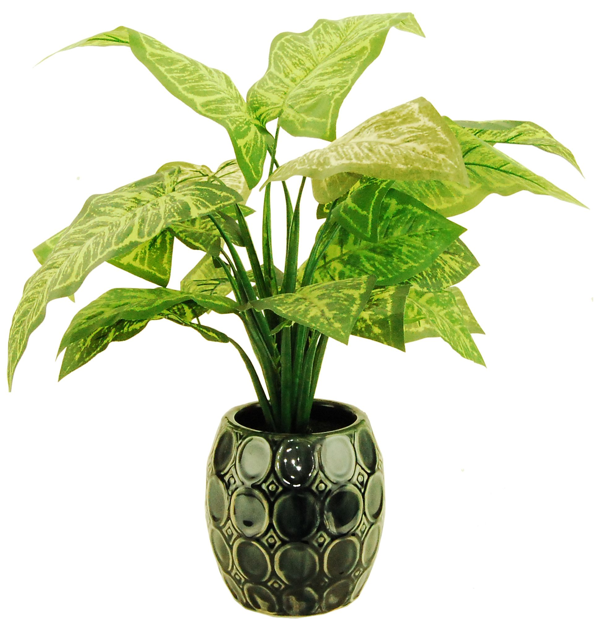 Lotus leaf desk top plant in decorative vase products pinterest