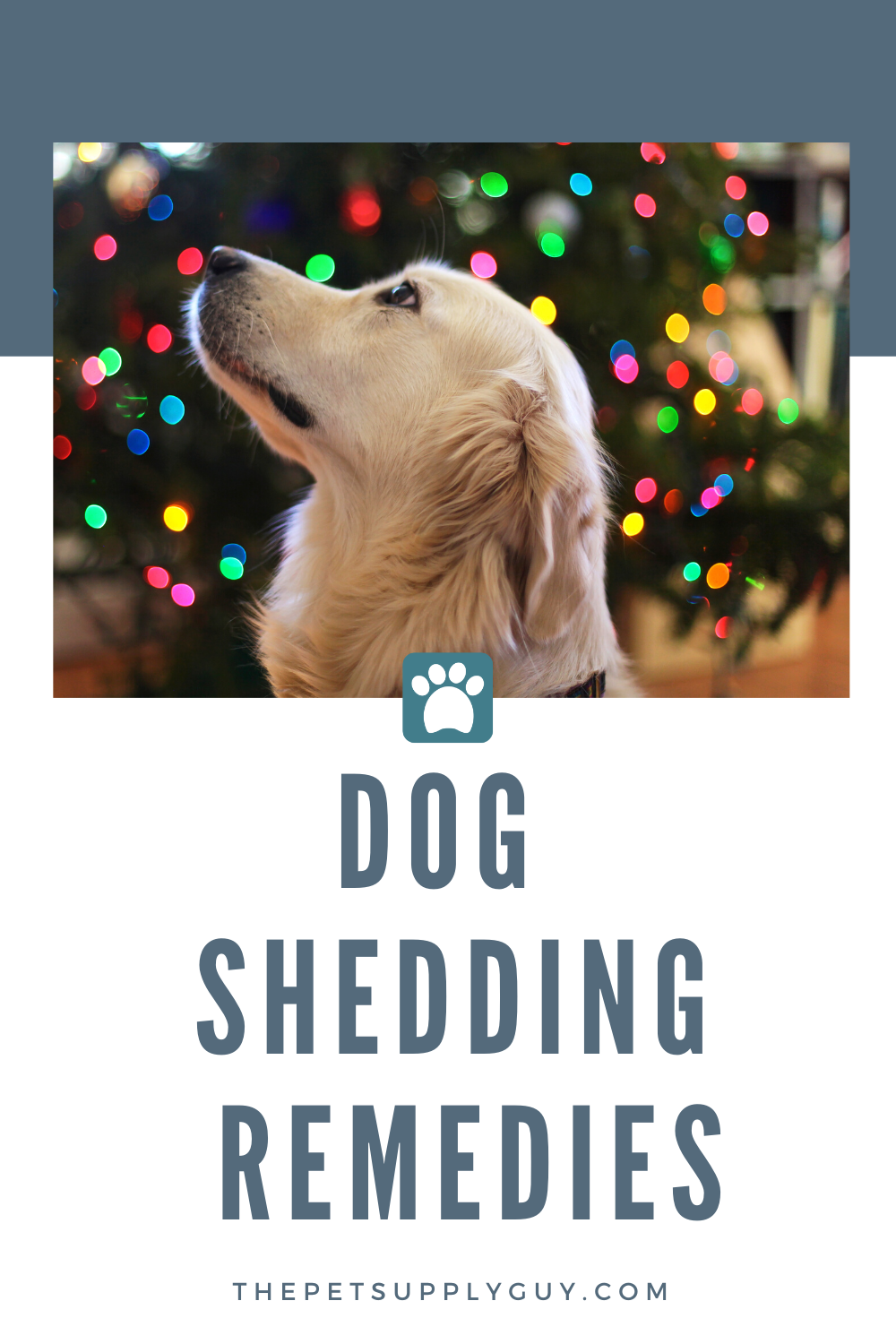 Best Supplements For Shedding Dogs 2020 Ratings Reviews In 2020 Dog Shedding Dogs Dog Supplies
