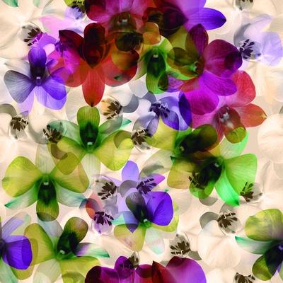 Diseño pétalo de larrelei | ilatela.com  #flores