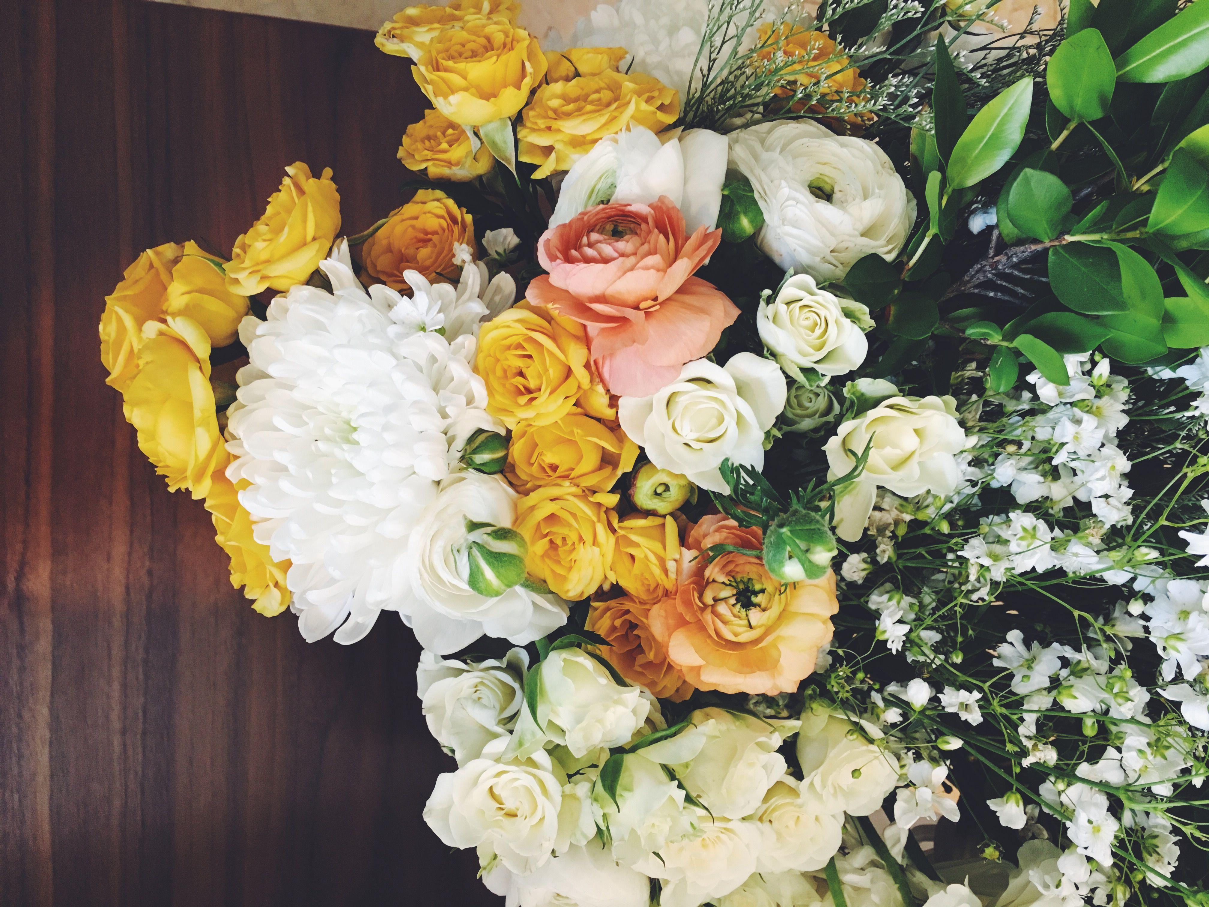 UP CLOSE YELLOW ORANGE & WHITE FLOWERS White flowers