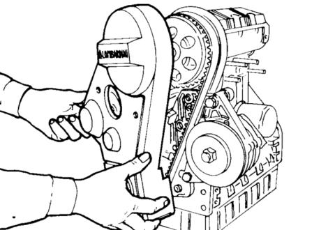 Fasatura Cinghia Distribuzione Piaggio Porter 1.4 diesel