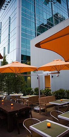 Tender Greens In Hollywood Offers Affordable Healthy And