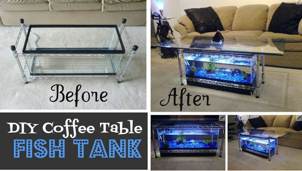 Coffee table fish tank how to great ideas pinterest for Fish tank table