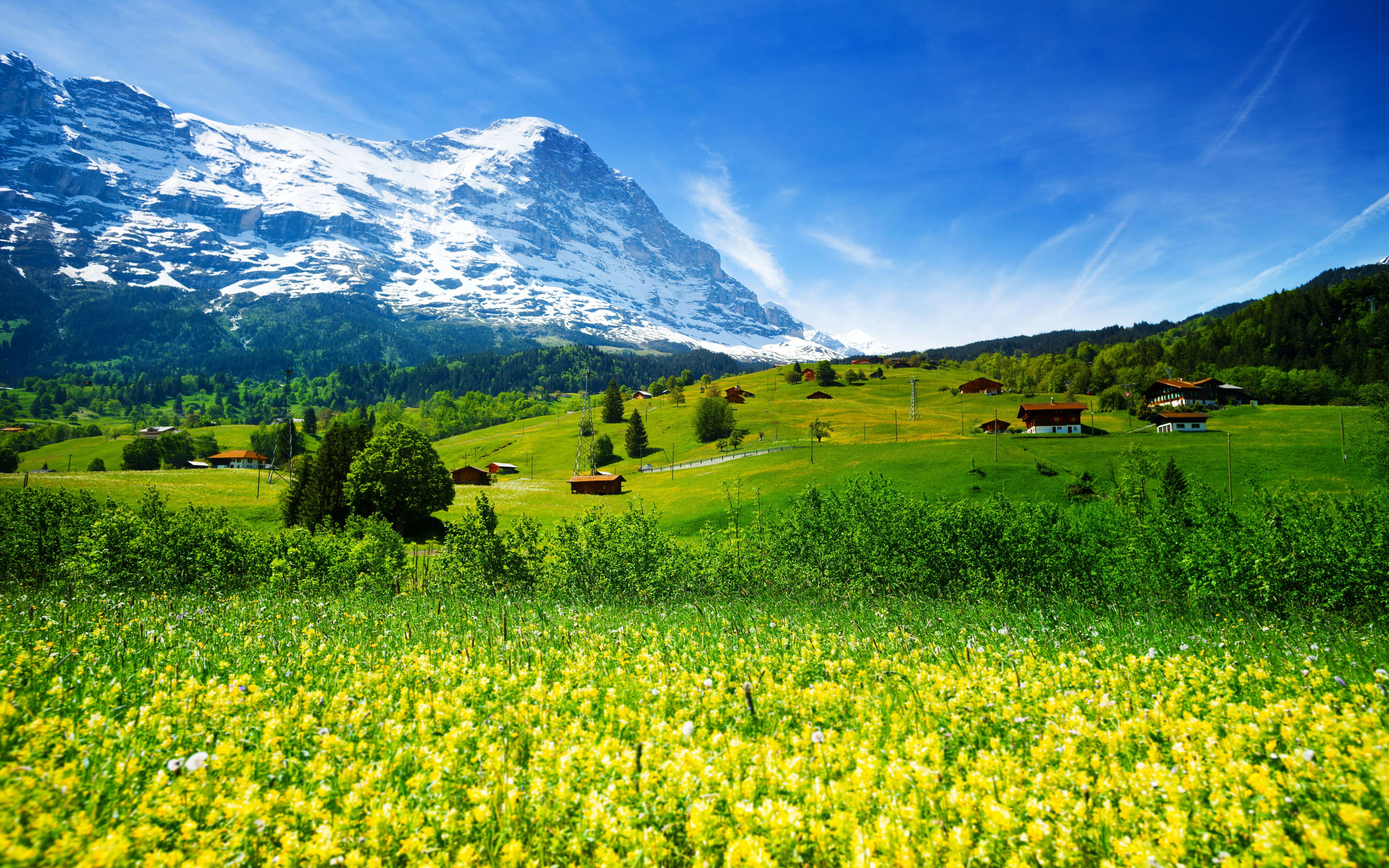 Spring Landscape Nature Switzerland Meadow With Yellow Flowers And Green Grass Mountainous Vi In 2021 Iphone Wallpaper Mountains Landscape Landscape Photography Nature Wallpaper valley relief grass river sky