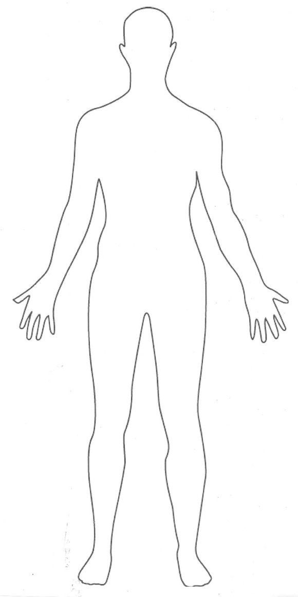 Encantador Contorno De Un Cuerpo Humano Adorno - Anatomía de Las ...