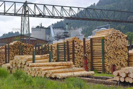 Holzlager Sägewerk