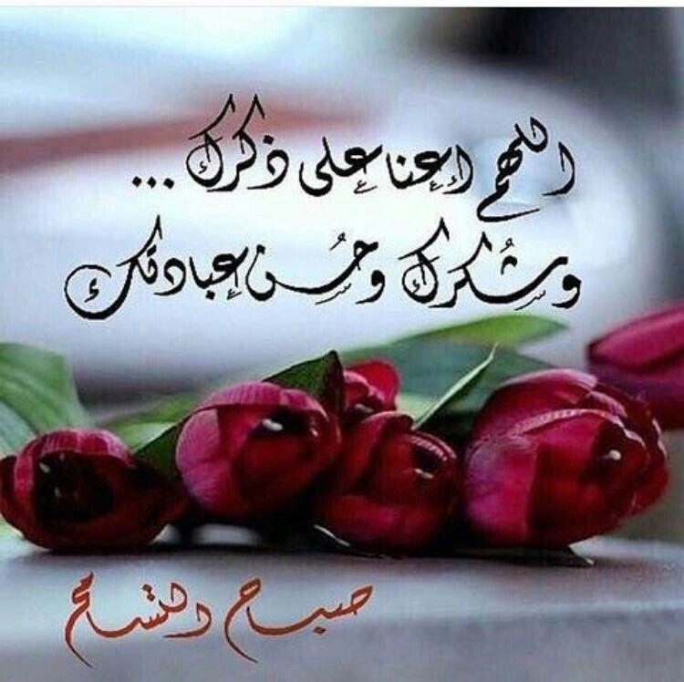صباح التسامح Greetings Qoutes Flowers