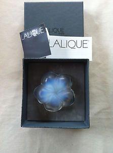 Lalique France - Motif Frangipanier Opale - Opalescent frangipani flower