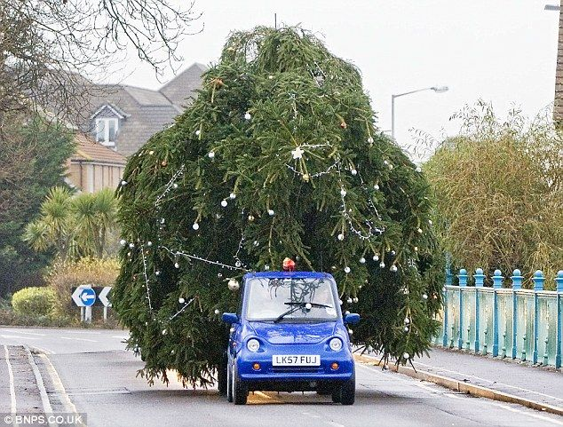 G Wiz! Man Tows 50ft Christmas Tree With Tiny Electric Car And  - Christmas Tree On Car