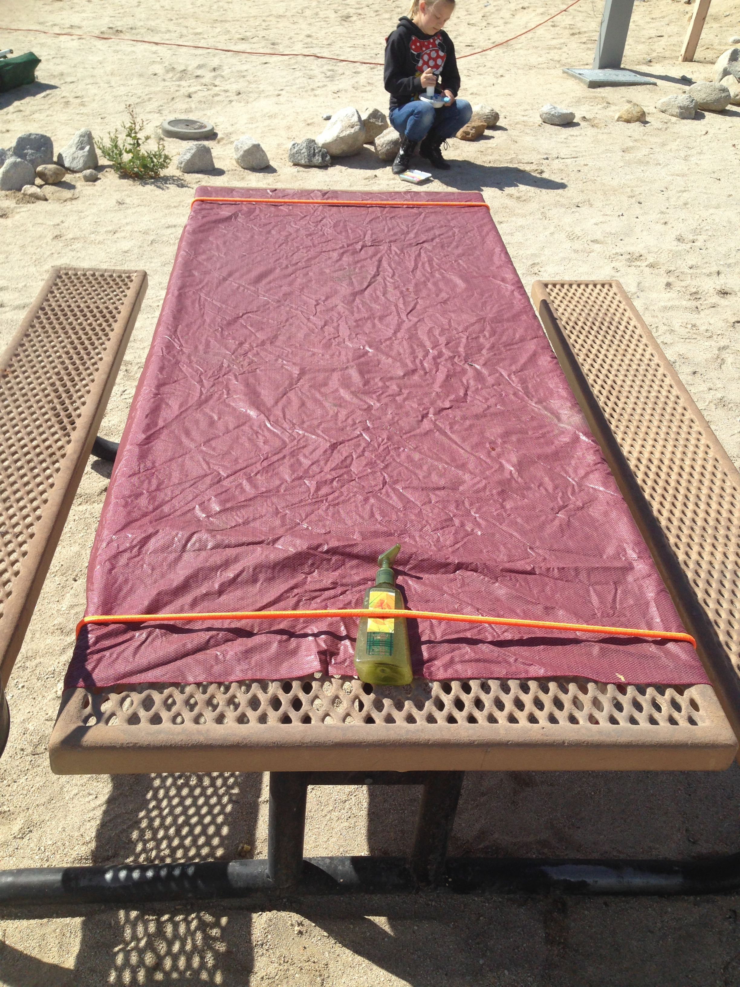 Bungee Picnic table cloth holder