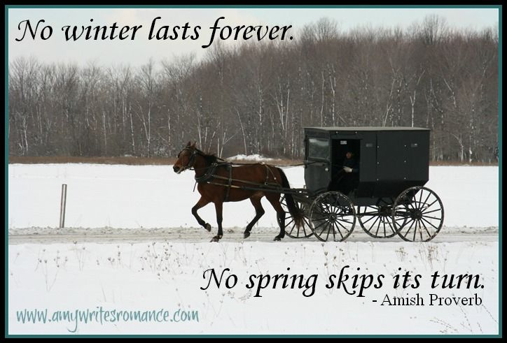 Amish proverb quote http://www.amywritesromance.com