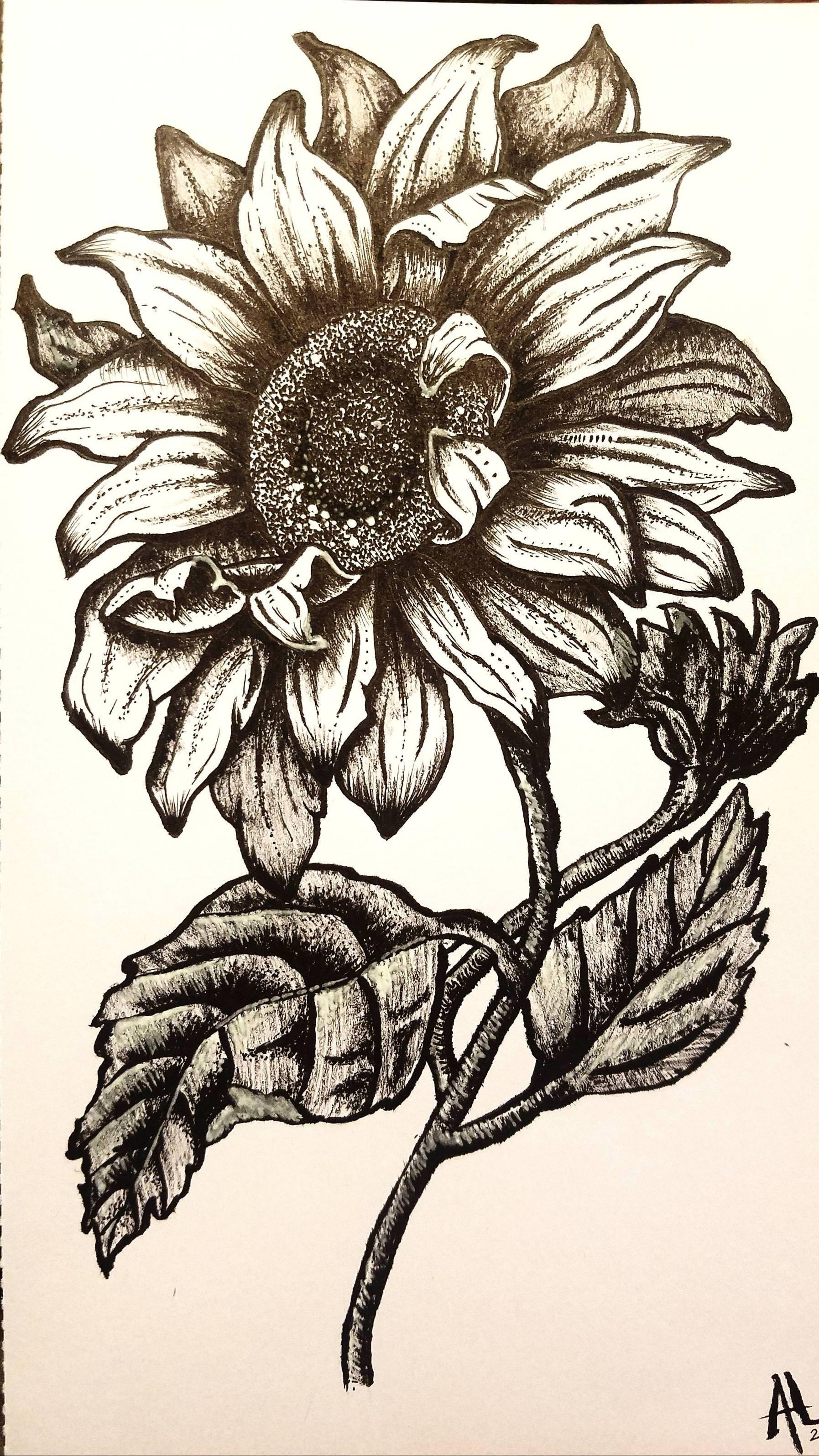 Dark sunflower ink x