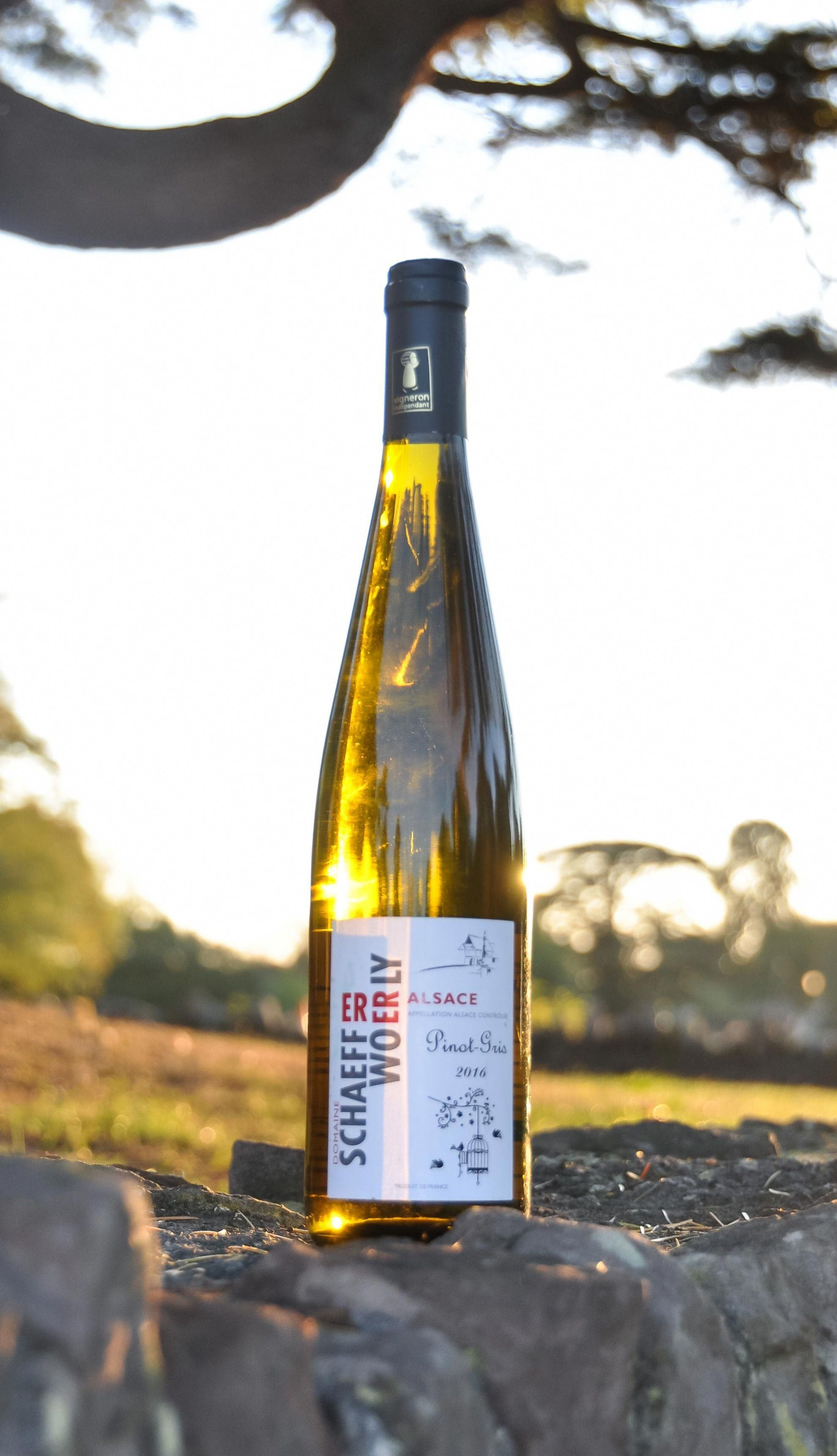 Pinot Gris Schaeffer Woerly Organic Vegan Bristol Winelover Lovewine Pinotgris White Wine Schaeffer Woerly Vinbio Delici Wine Pinot Gris Vegan Wine