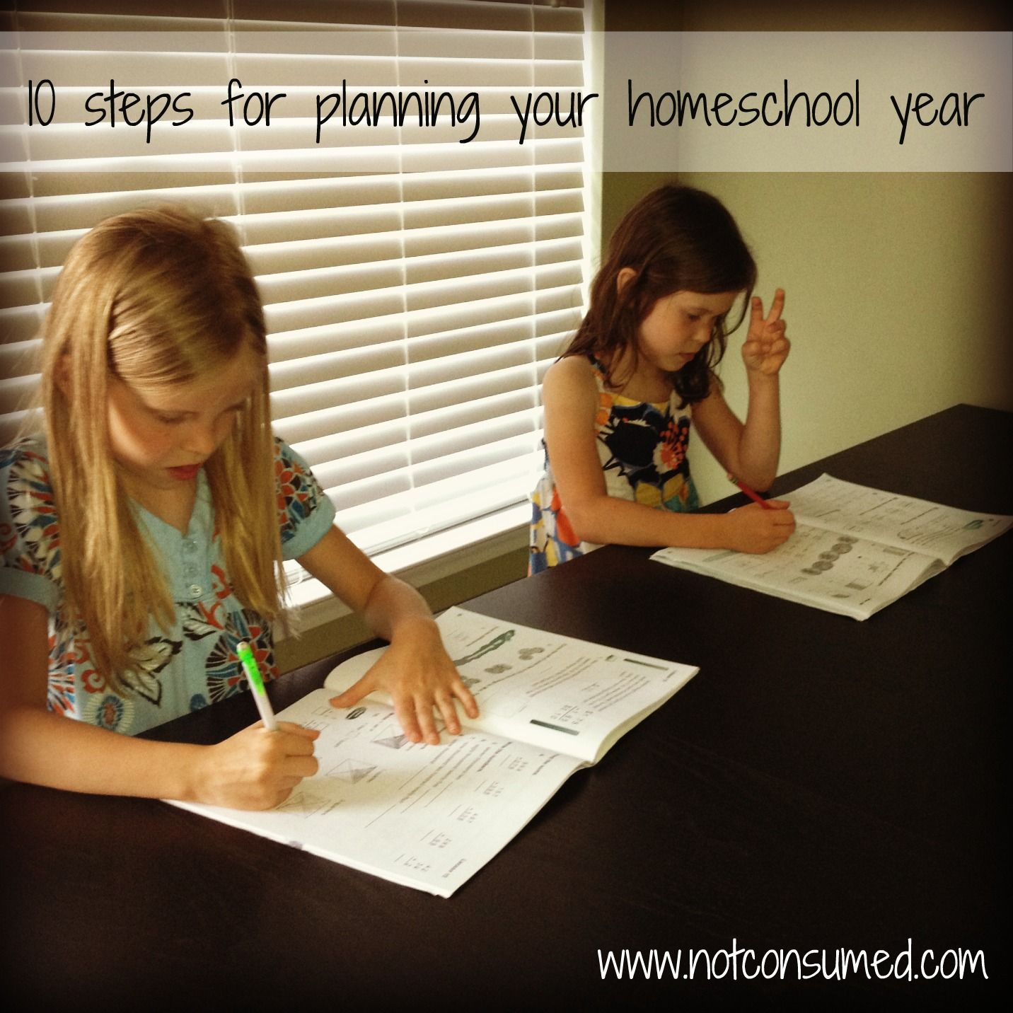great homeschooling ideas, and blogs! i needed this to help get organized with everything!!