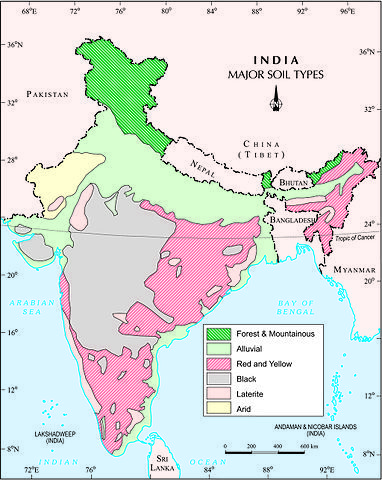 Soil Map Of India Major soil types in India | environment | Types of soil, India map