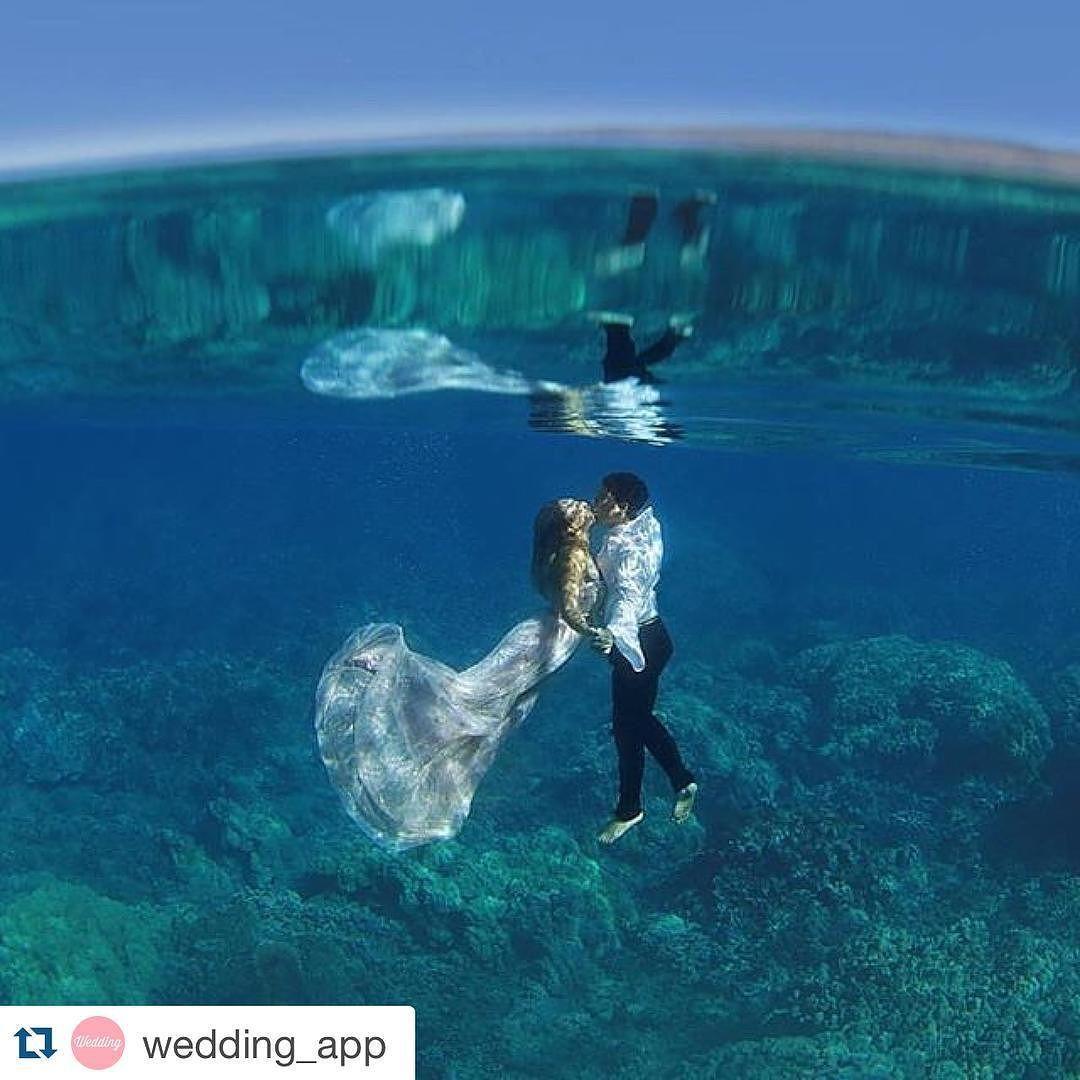 Bob On Instagram Amazing And Unique Underwater Wedding Picture Loveandwater Underwater Photography Wedding Underwater Wedding Underwater Photography