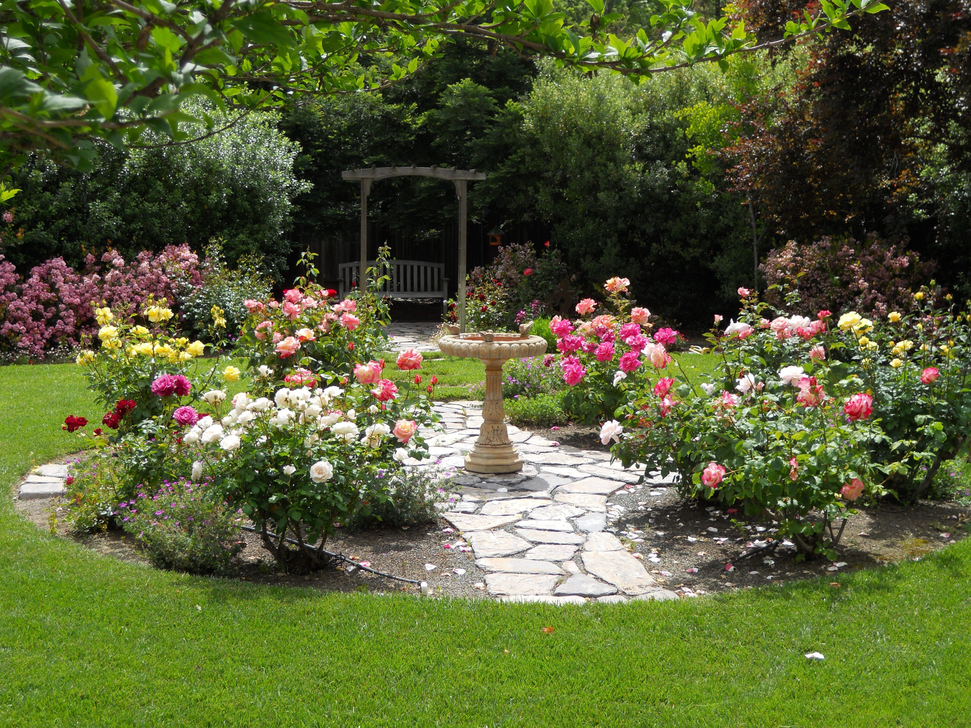 Rose Garden Designs For Small Yard .Soon you'll learn ...