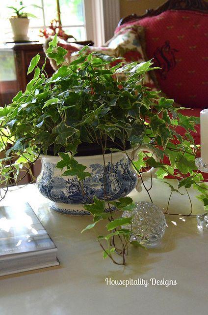 Great room table vignette by shirleystankus via flickr easy to grow house plants pinterest - Great indoor houseplants ...