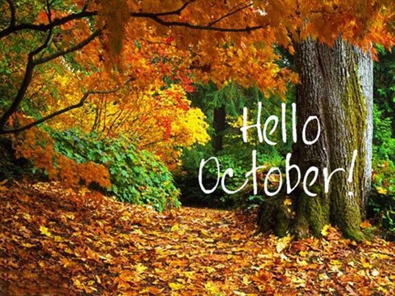 """Annmarie on Twitter 20161001: """"Happy October!!"""" 🍂🍁🌰🎃☕️"""