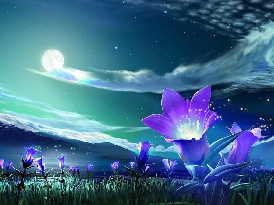 You Can See Fantastic Pink Flowers Drawn On This HD Wallpaper Full Moon In The Purple And Black Color Sky Mountains Are Horizon