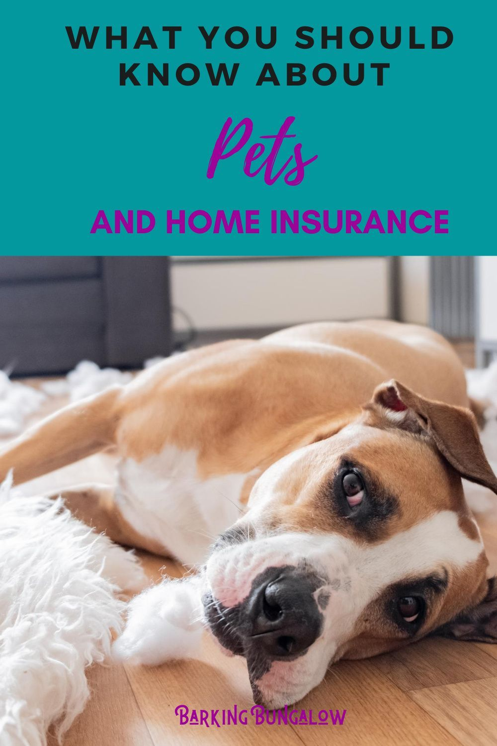The Uncomplicated Guide To Pets And Home Insurance Barking Bungalow In 2020 Home Insurance Pet Friendly Furniture Pets