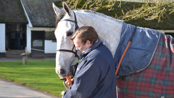 Simonsig and Nicky Henderson