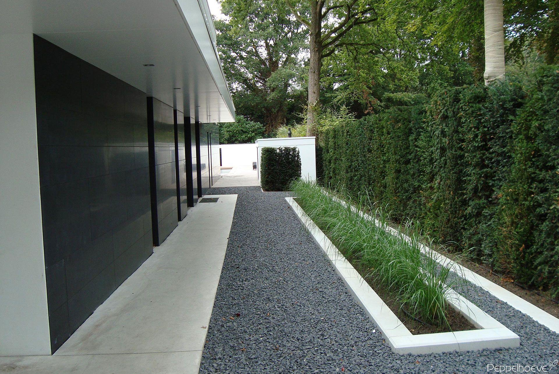 Minimalistische tuin peppelhoeve green gardens