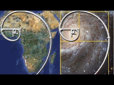 Imagine if there was a perfect number, a single number so... Bonus Video  @Patreon http://www.patreon.com/strangem… | Art lesson video, Fibonacci,  Fibonacci sequence