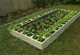 cinder block gardening- front of the house? Side of house for squash mound? Run soaker hose around inside.