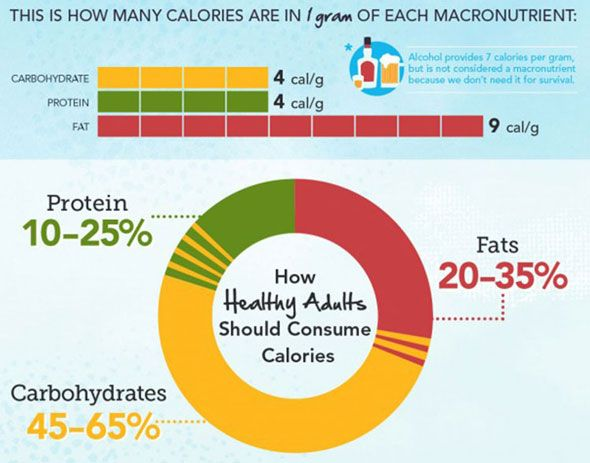 Calorie Fat And Carbohydrate