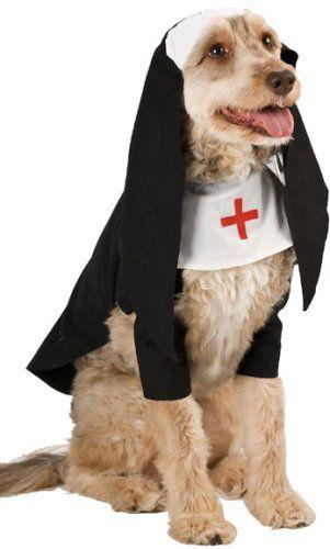 Dog Nun Halloween Costume Size Medium Http Www Thepuppy Org