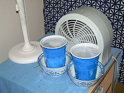 Cool Yourself Without Air Conditioning Homemade Conditioner